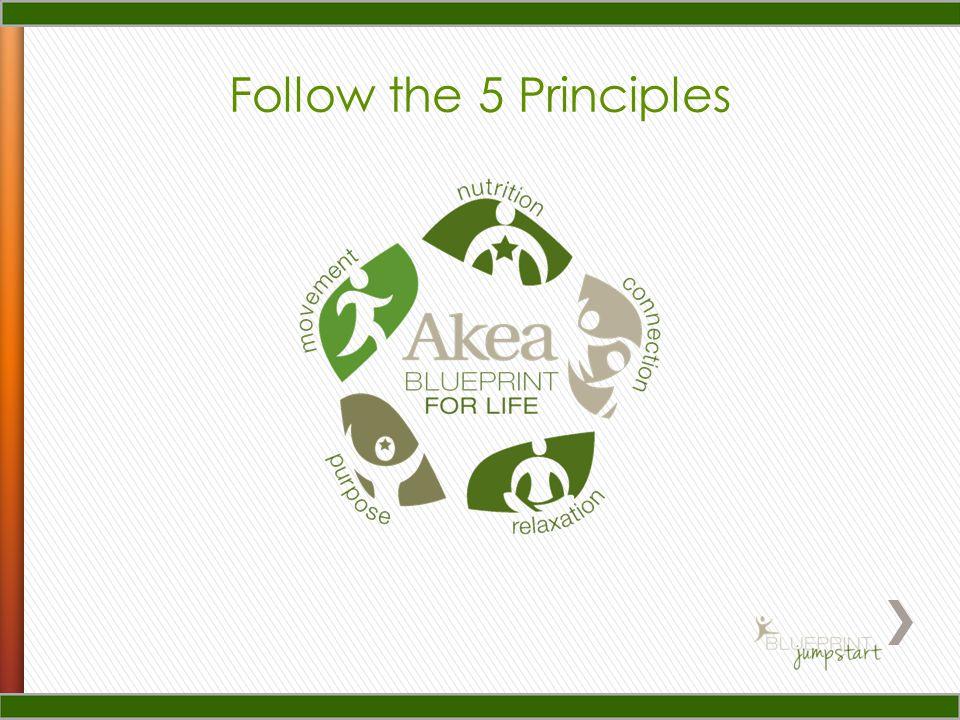 Follow the 5 Principles