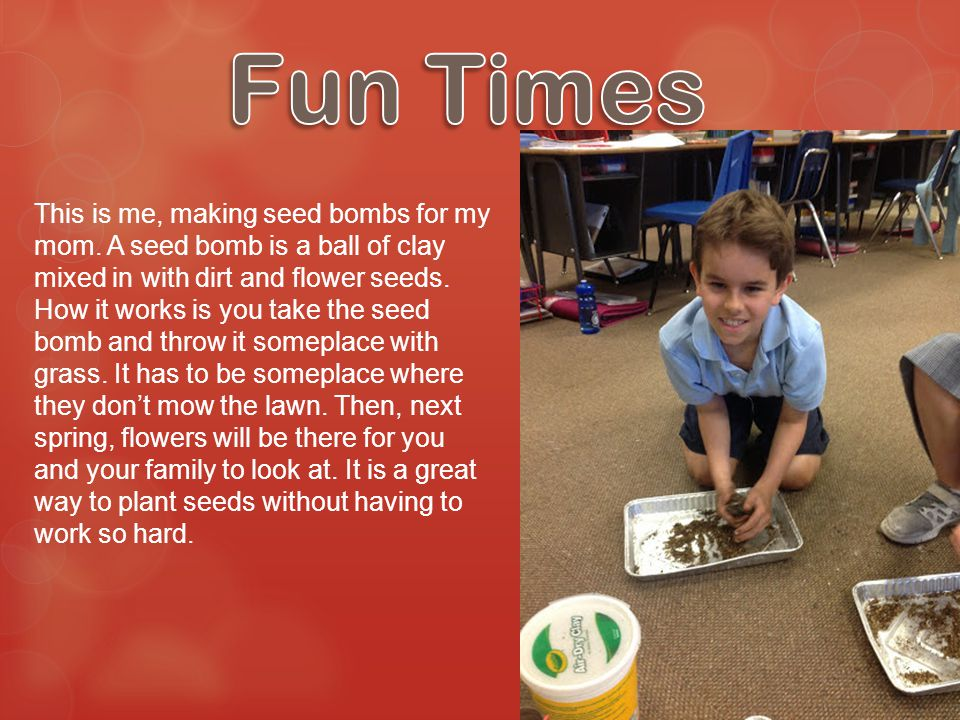 This is me, making seed bombs for my mom. A seed bomb is a ball of clay mixed in with dirt and flower seeds. How it works is you take the seed bomb an