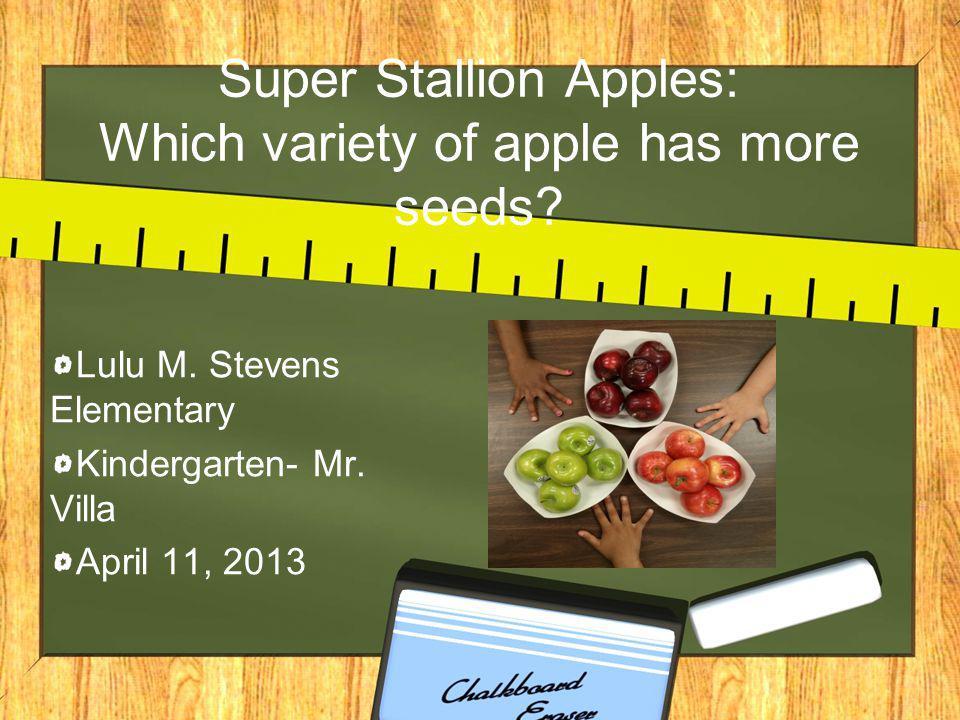 Super Stallion Apples: Which variety of apple has more seeds? Lulu M. Stevens Elementary Kindergarten- Mr. Villa April 11, 2013