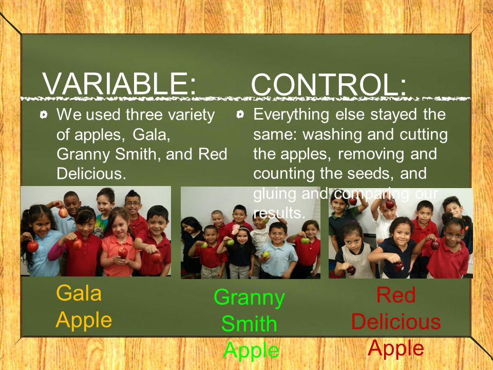 VARIABLE: We used three variety of apples, Gala, Granny Smith, and Red Delicious. Gala Apple Granny Smith Apple Red Delicious Apple CONTROL: Everythin