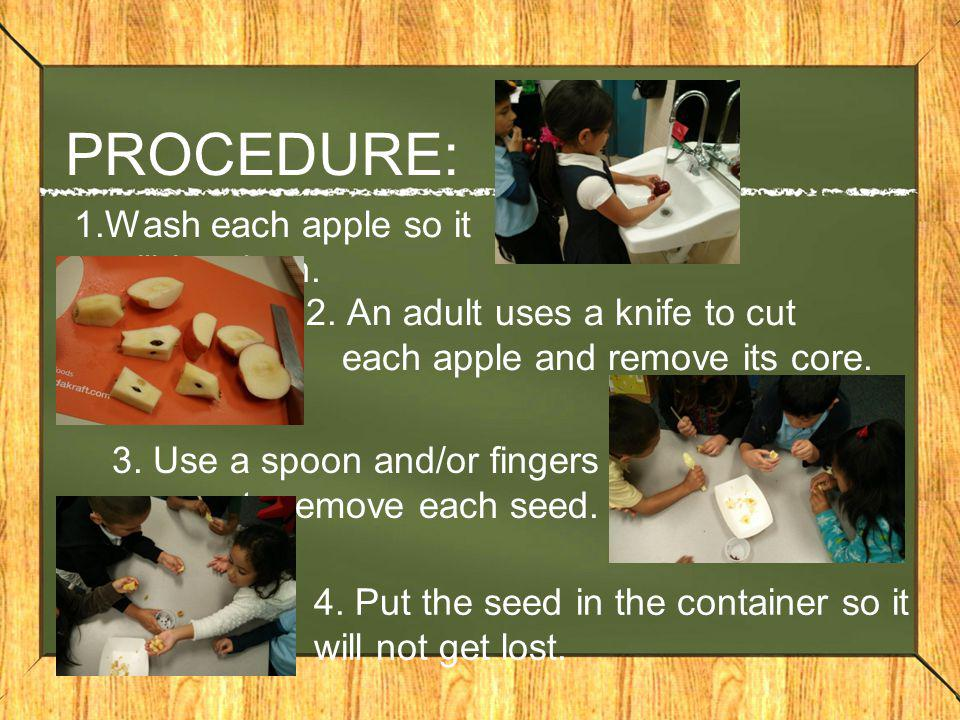 PROCEDURE: 1.Wash each apple so it will be clean. 2. An adult uses a knife to cut each apple and remove its core. 3. Use a spoon and/or fingers to rem