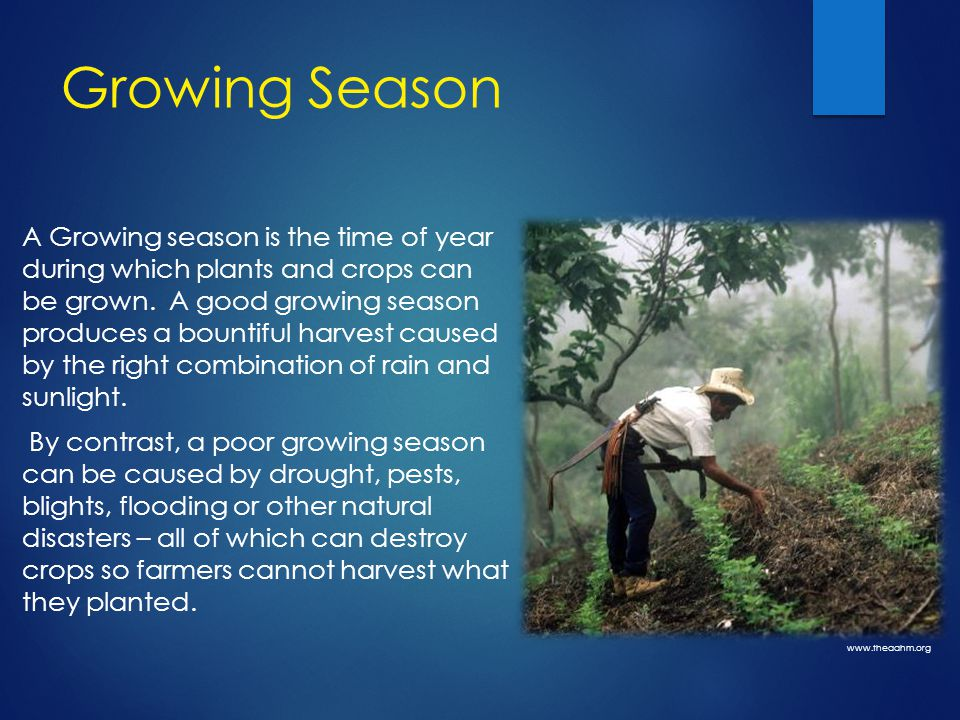 Growing Season A Growing season is the time of year during which plants and crops can be grown.