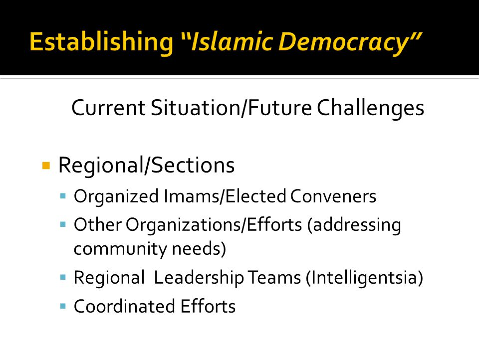 Current Situation/Future Challenges  Regional/Sections  Organized Imams/Elected Conveners  Other Organizations/Efforts (addressing community needs)  Regional Leadership Teams (Intelligentsia)  Coordinated Efforts