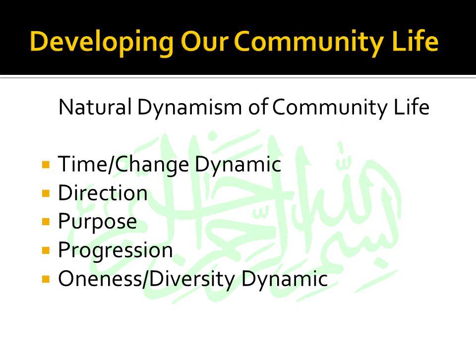 Oneness Diversity
