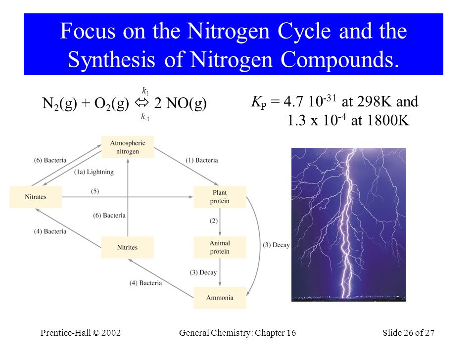 Prentice-Hall © 2002General Chemistry: Chapter 16Slide 26 of 27 Focus on the Nitrogen Cycle and the Synthesis of Nitrogen Compounds.