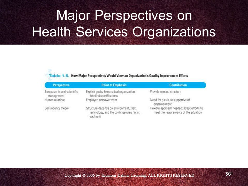 Copyright © 2006 by Thomson Delmar Learning. ALL RIGHTS RESERVED. 36 Major Perspectives on Health Services Organizations