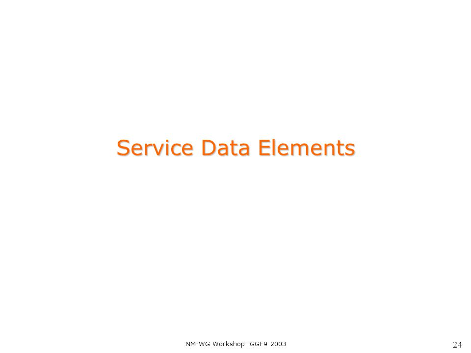 NM-WG Workshop GGF9 2003 24 Service Data Elements