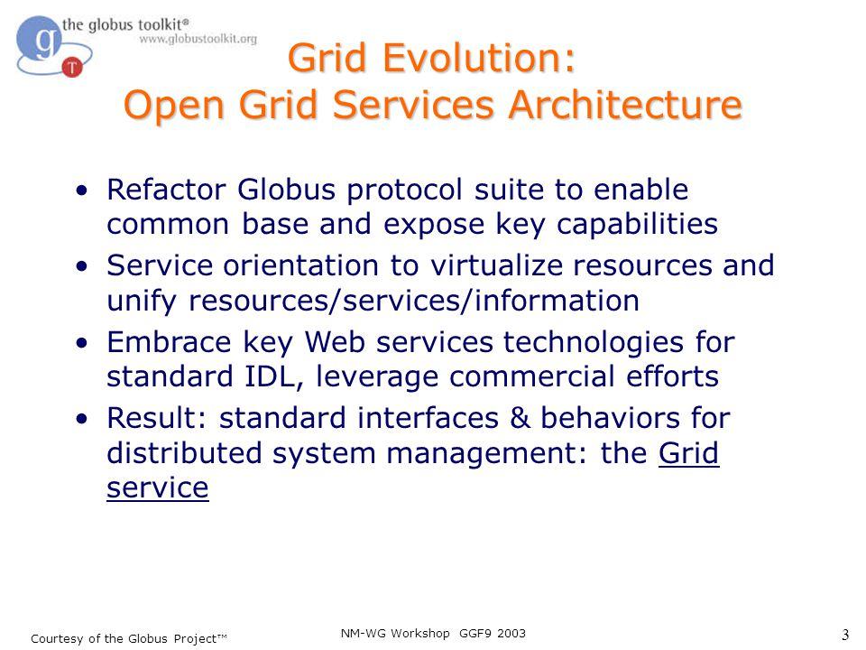 NM-WG Workshop GGF9 2003 24 Service Data Elements