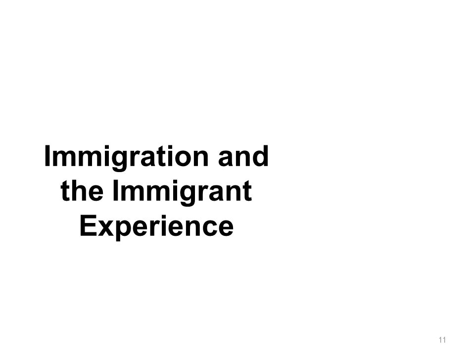 Immigration and the Immigrant Experience 11