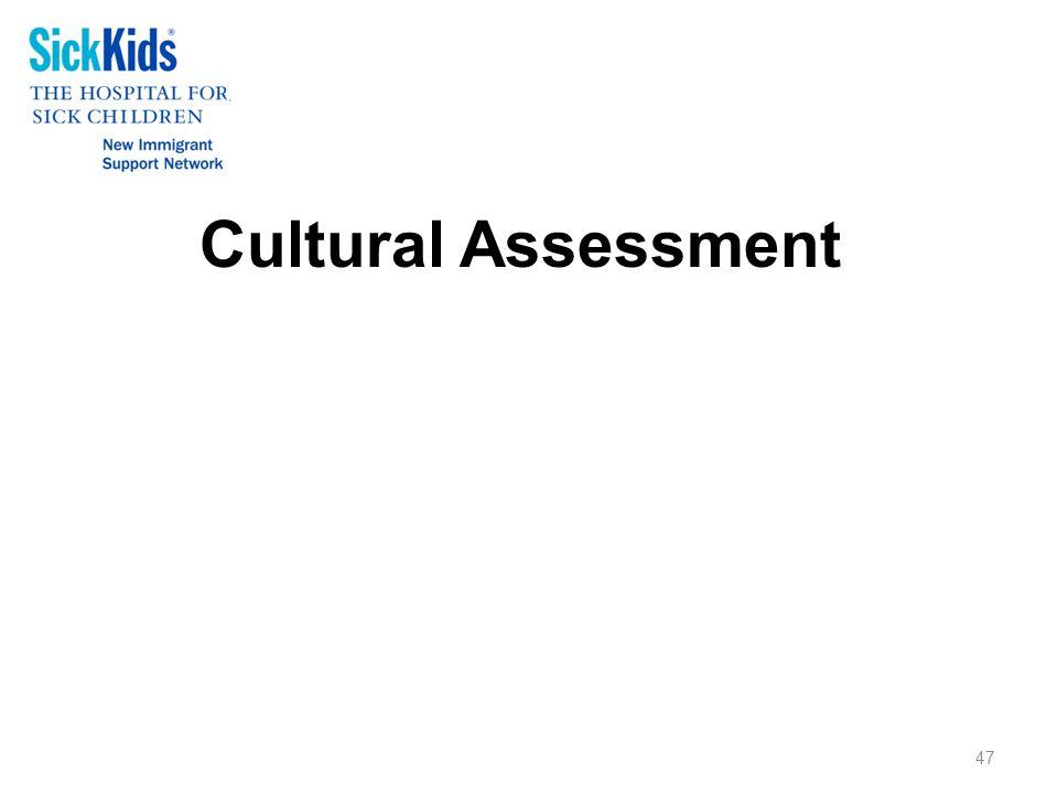 Cultural Assessment 47