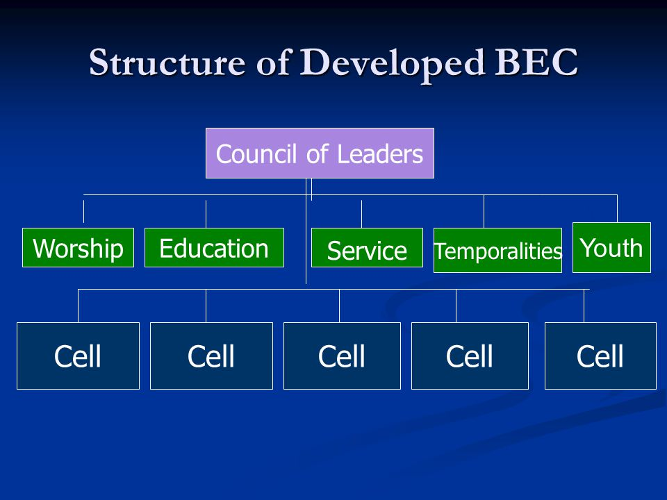 Structure of Developed BEC Council of Leaders Education Service Temporalities Worship Cell Youth