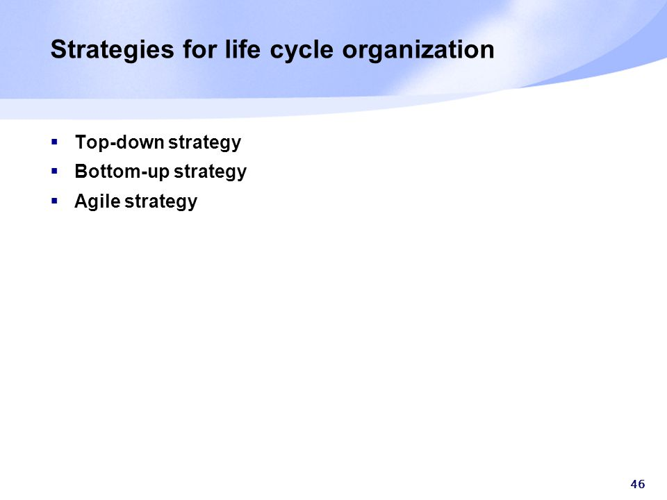 46 Strategies for life cycle organization  Top-down strategy  Bottom-up strategy  Agile strategy