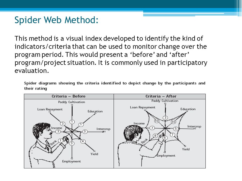 Spider Web Method: This method is a visual index developed to identify the kind of indicators/criteria that can be used to monitor change over the pro