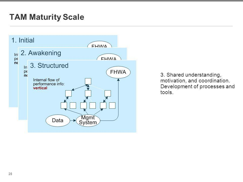 28 TAM Maturity Scale 3. Shared understanding, motivation, and coordination. Development of processes and tools.