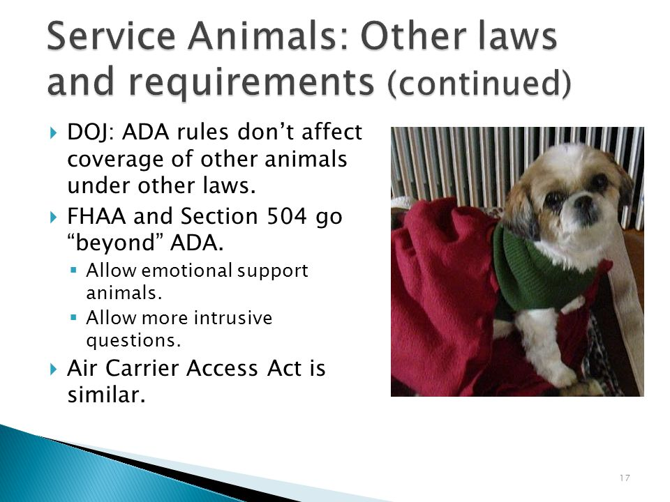 17 Service Animals: Other laws and requirements (continued)  DOJ: ADA rules don't affect coverage of other animals under other laws.