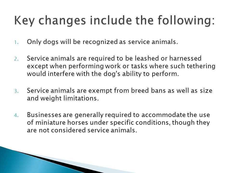  Effective March 15, 2011, Service animal means any dog that is individually trained to do work or perform tasks for the benefit of an individual with a disability, including a physical, sensory, psychiatric, intellectual, or other mental disability.