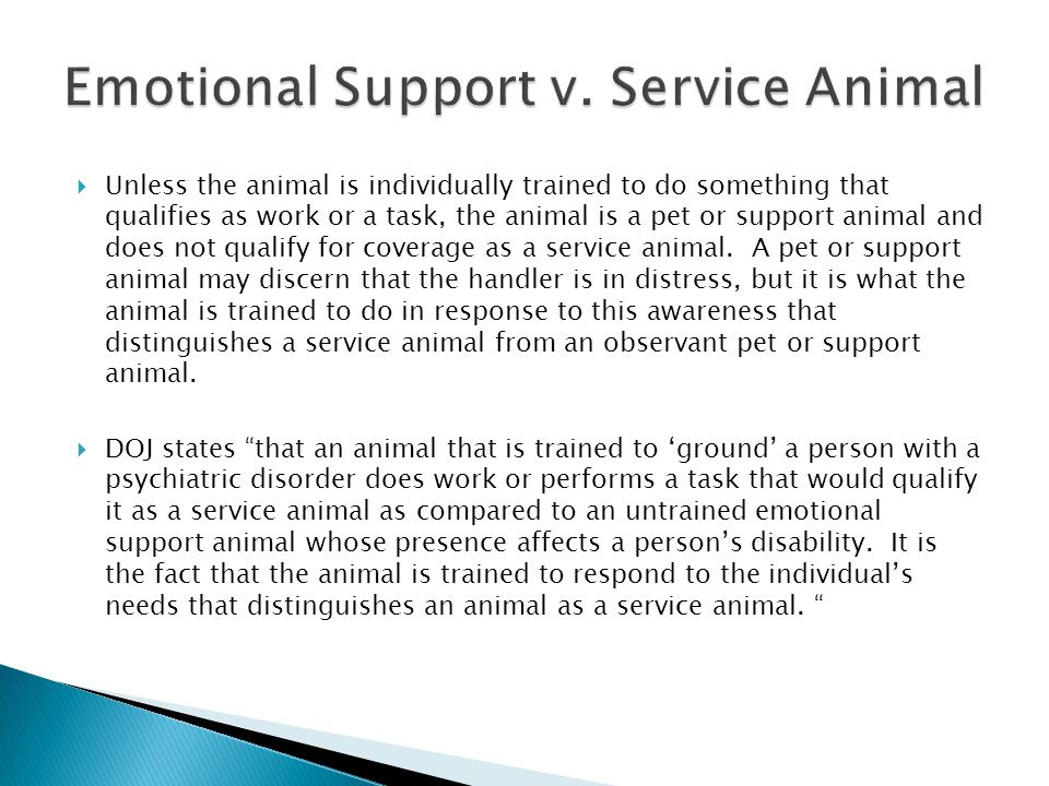  Unless the animal is individually trained to do something that qualifies as work or a task, the animal is a pet or support animal and does not qualify for coverage as a service animal.