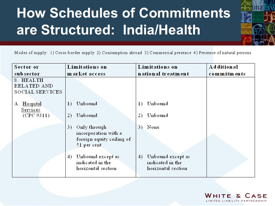 How Schedules of Commitments are Structured: India/Health