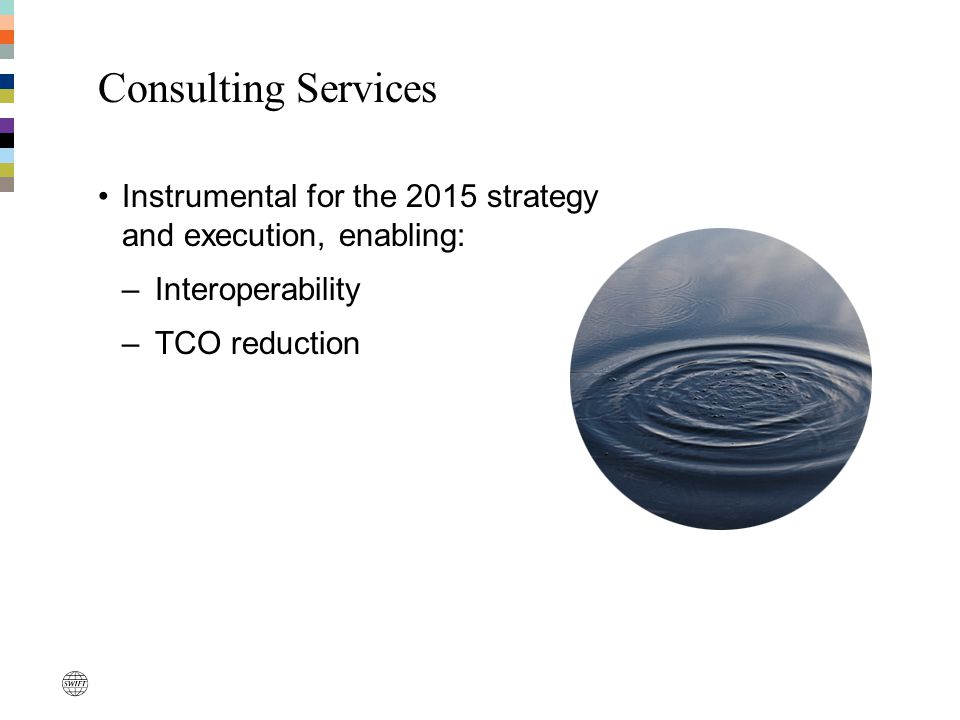 Consulting Services Instrumental for the 2015 strategy and execution, enabling: –Interoperability –TCO reduction