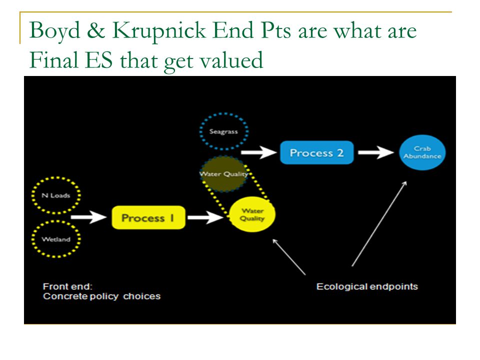 Conclusions Economists have a specific definition of Economic Value as WTP or WTA Market Prices reflect Use Values for private Ecosystem Services