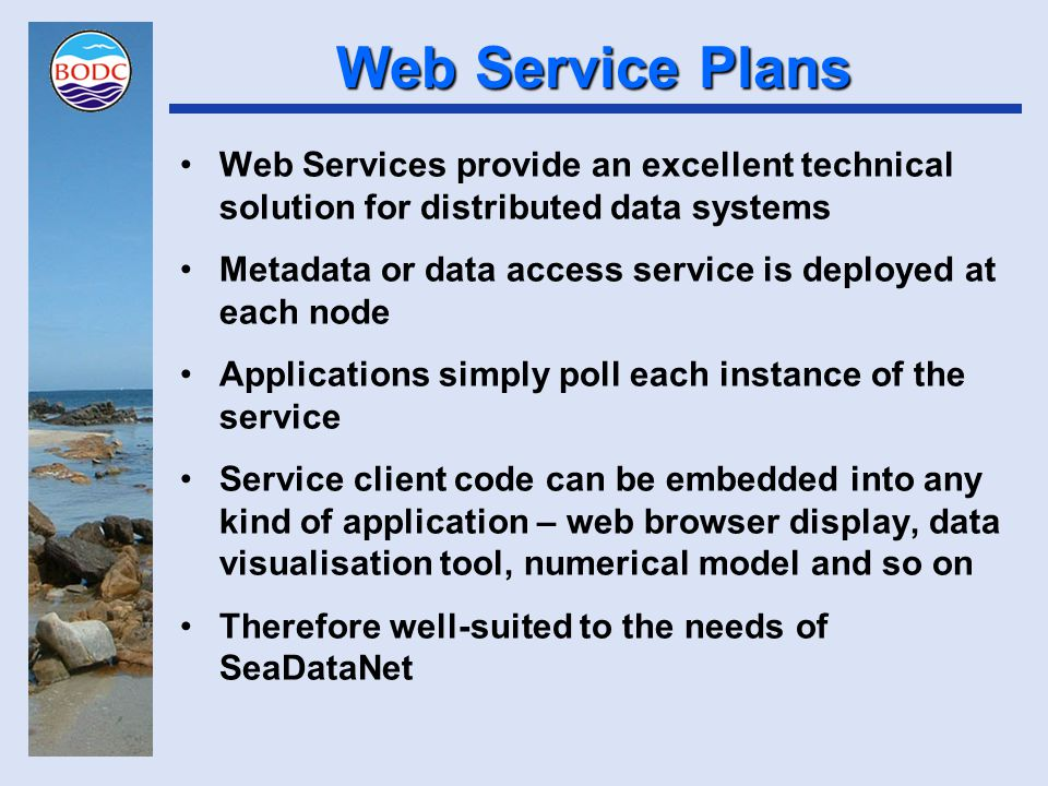 Web Service Plans Web Services provide an excellent technical solution for distributed data systems Metadata or data access service is deployed at eac