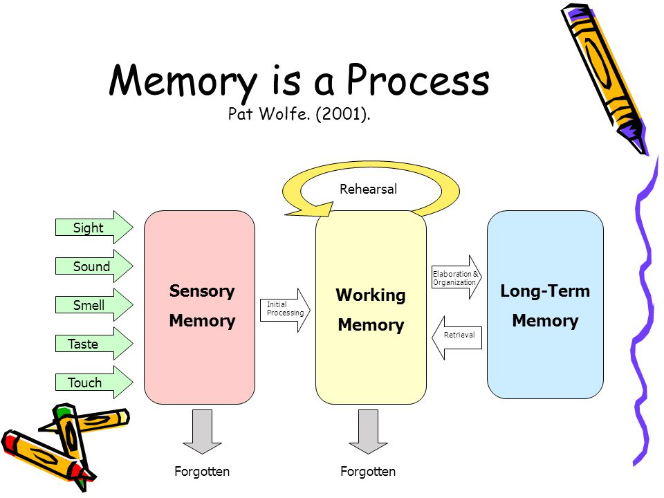 Memory is a Process Pat Wolfe. (2001).