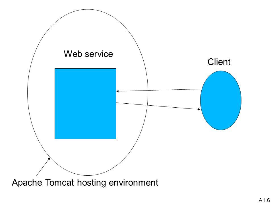A1.6 Client Web service Apache Tomcat hosting environment