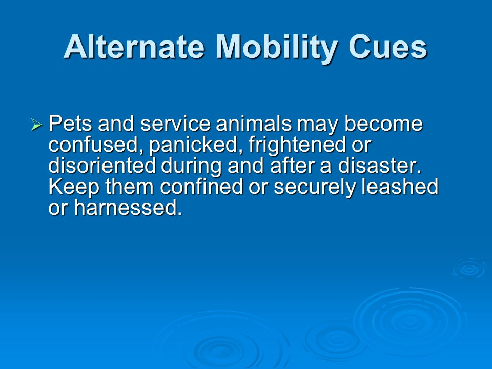 Alternate Mobility Cues  Pets and service animals may become confused, panicked, frightened or disoriented during and after a disaster. Keep them con