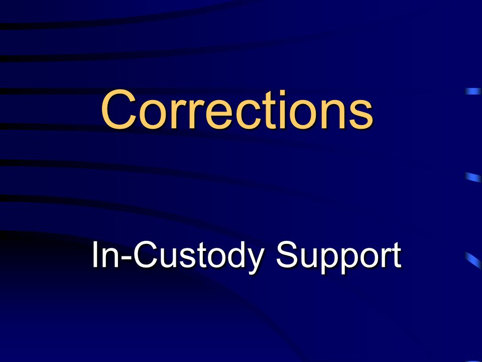 Corrections In-Custody Support