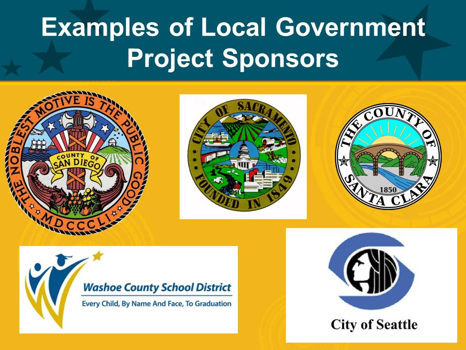 Examples of Local Government Project Sponsors