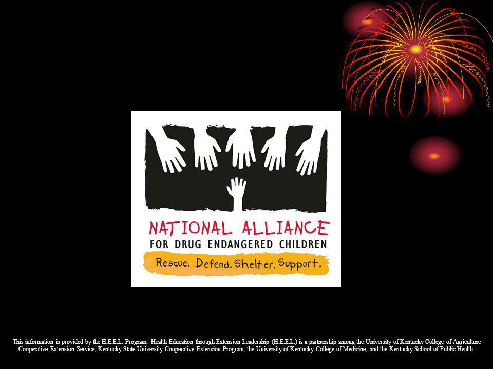 What is the National D.E.C.Alliance Training. D.E.C.