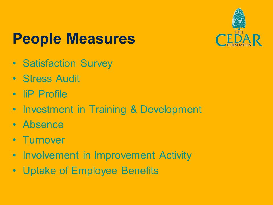 People Measures Satisfaction Survey Stress Audit IiP Profile Investment in Training & Development Absence Turnover Involvement in Improvement Activity