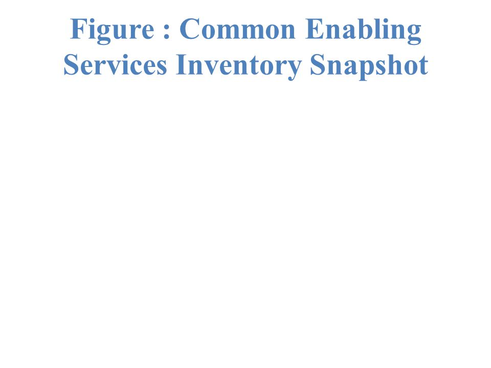Figure : Common Enabling Services Inventory Snapshot