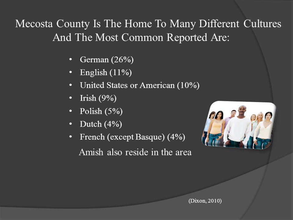 Population Affiliation Percentage in Mecosta County Lutheran Church (11%) United Methodist Church (14%) United Church of Christ (5%) Catholic Church (
