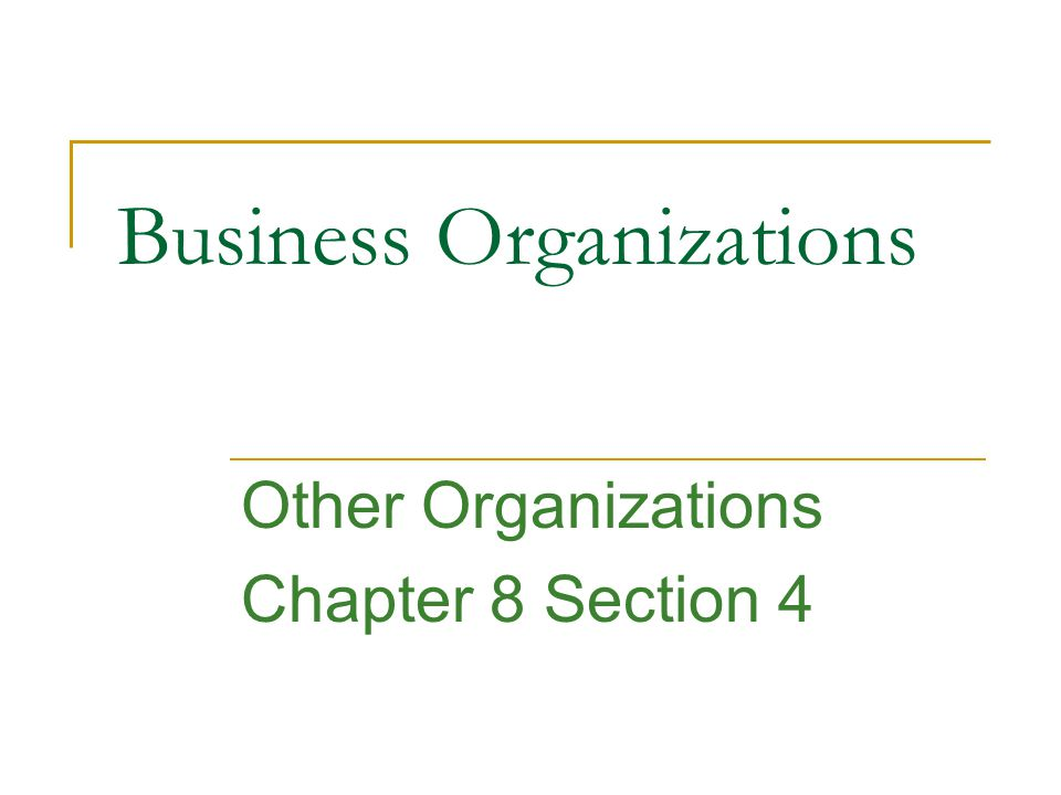 Business Organizations Other Organizations Chapter 8 Section 4