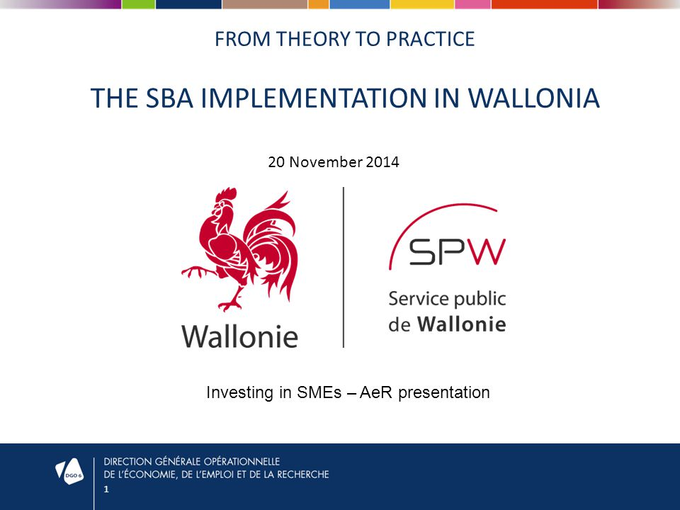 1 FROM THEORY TO PRACTICE THE SBA IMPLEMENTATION IN WALLONIA 20 November 2014 Investing in SMEs – AeR presentation