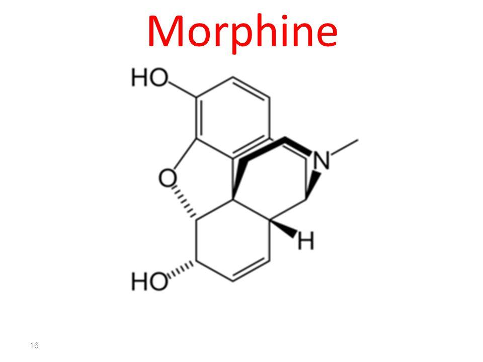 Morphine 16