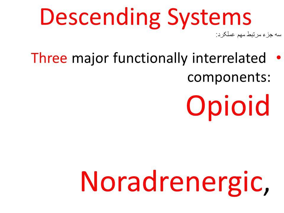 Descending Systems Three major functionally interrelated components: Opioid Noradrenergic, Serotonergic systems.