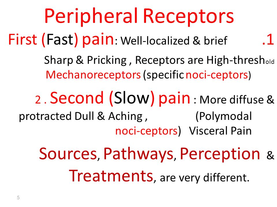5 Peripheral Receptors 1.First (Fast) pain : Well-localized & brief Sharp & Pricking, Receptors are High-thresh old Mechanoreceptors (specific noci-ceptors ) 2.