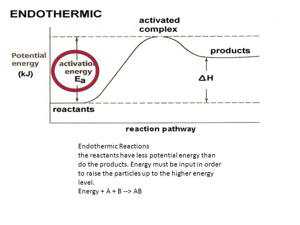 Exothermic Reactions the reactants have more potential energy than the products have.