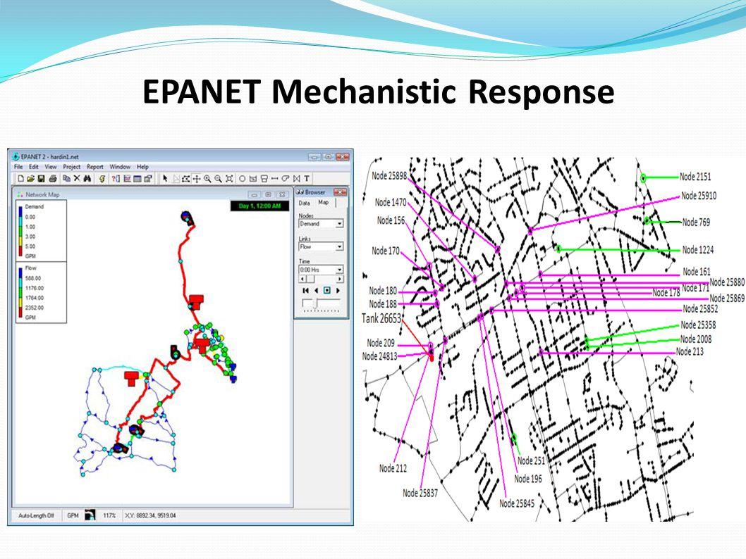 EPANET Mechanistic Response