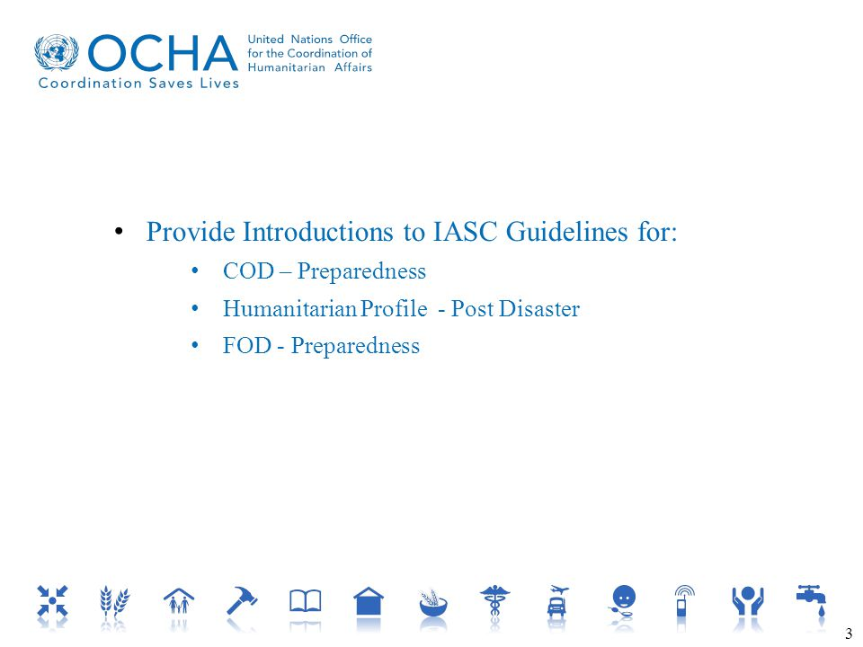 Provide Introductions to IASC Guidelines for: COD – Preparedness Humanitarian Profile - Post Disaster FOD - Preparedness 3