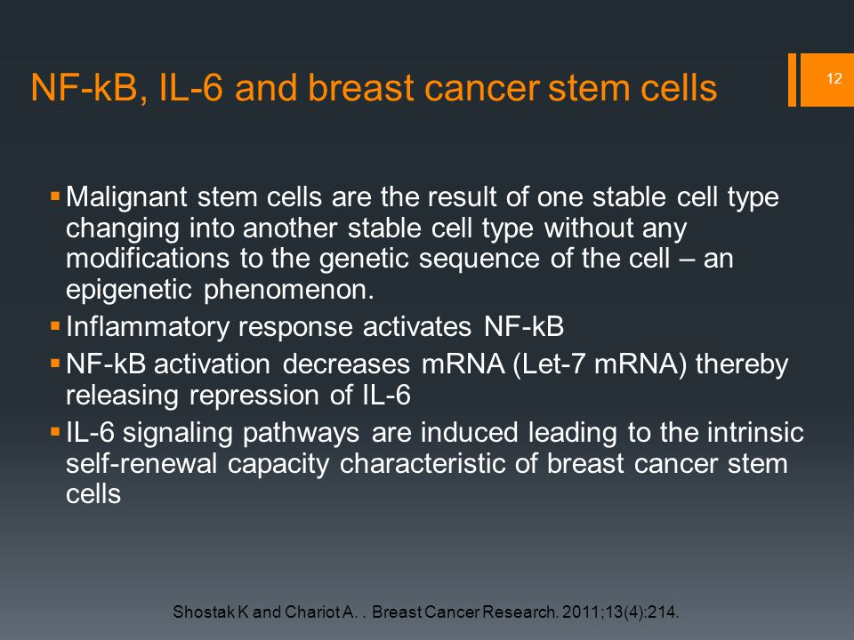 NF-kB, IL-6 and breast cancer stem cells  Malignant stem cells are the result of one stable cell type changing into another stable cell type without any modifications to the genetic sequence of the cell – an epigenetic phenomenon.