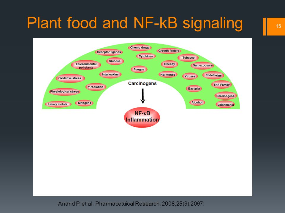 Plant food and NF-kB signaling 15 Anand P. et al. Pharmacetuical Research, 2008;25(9):2097.
