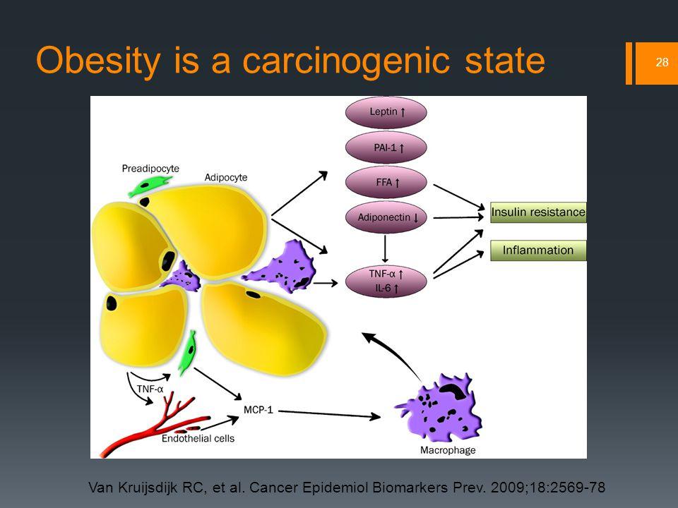 Obesity is a carcinogenic state 28 Van Kruijsdijk RC, et al.