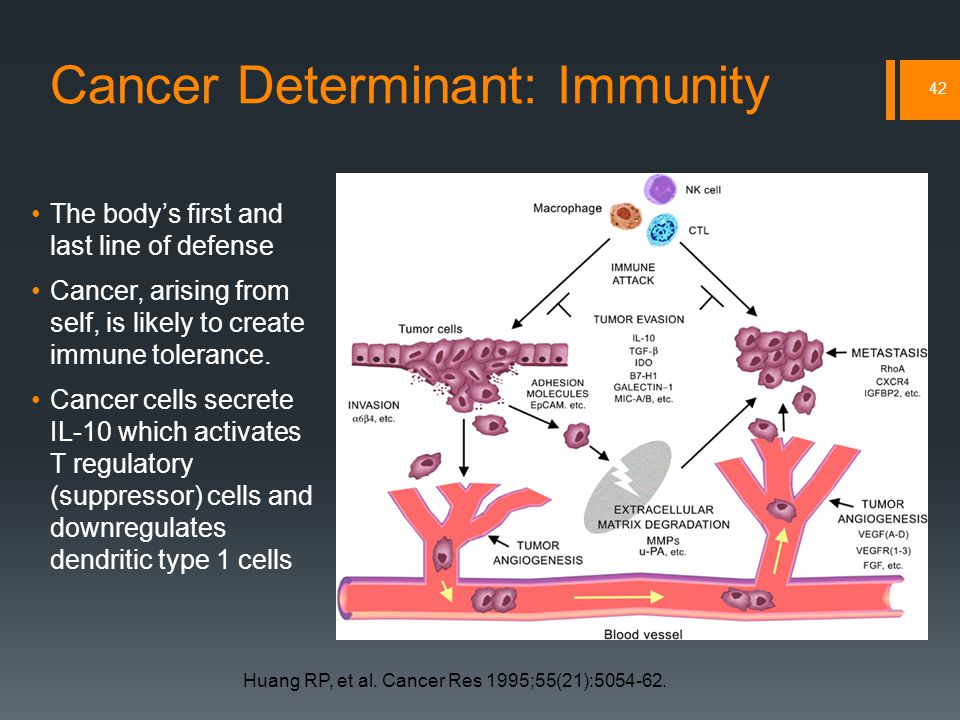 Cancer Determinant: Immunity The body's first and last line of defense Cancer, arising from self, is likely to create immune tolerance.