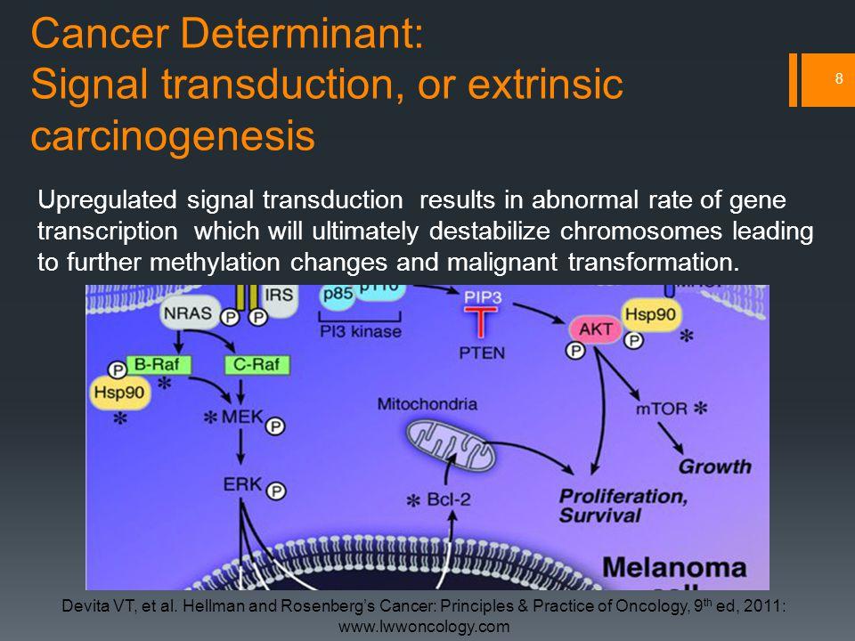 Cancer Determinant: Signal transduction, or extrinsic carcinogenesis 8 Devita VT, et al.