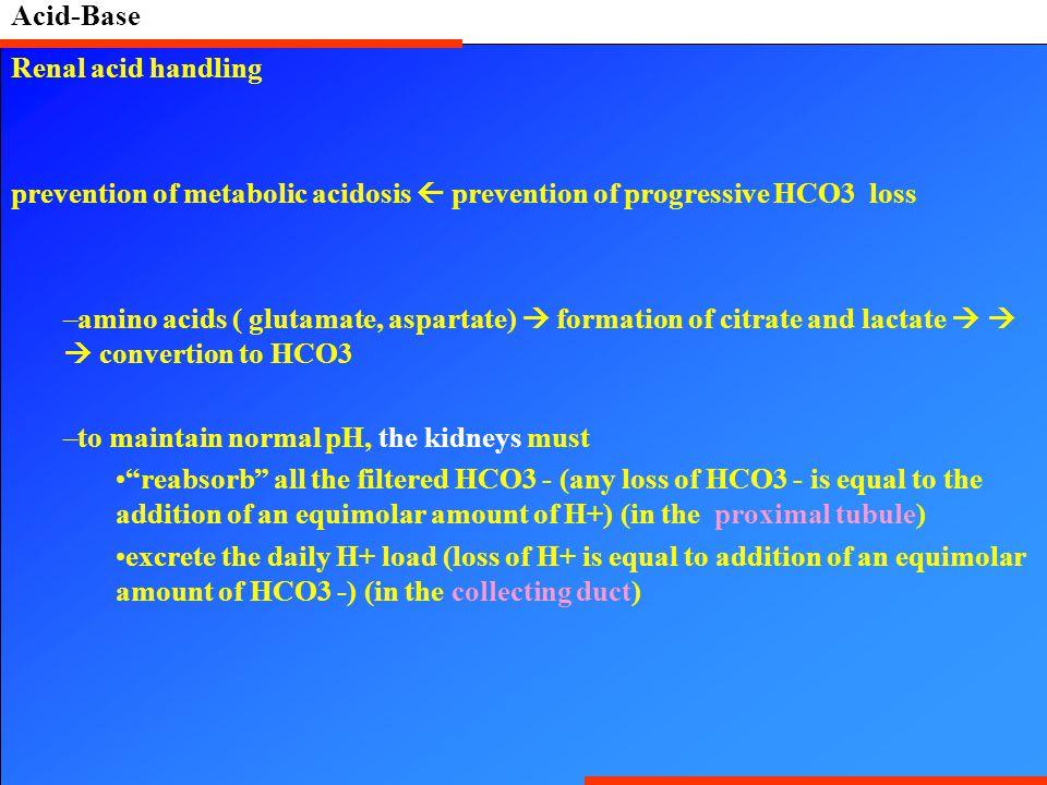Acid-Base Renal acid handling prevention of metabolic acidosis  prevention of progressive HCO3 loss –amino acids ( glutamate, aspartate)  formation
