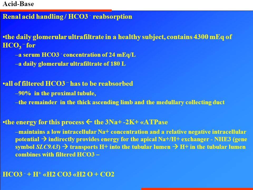 Acid-Base Renal acid handling / HCO3 - reabsorption the daily glomerular ultrafiltrate in a healthy subject, contains 4300 mEq of HCO 3 – for –a serum