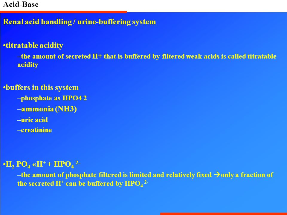 Acid-Base Renal acid handling / urine-buffering system titratable acidity –the amount of secreted H+ that is buffered by filtered weak acids is called